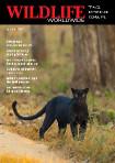 Wildlife Worldwide brochure front cover.